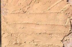Высохший песчано-глиняный раствор, нанесенный на стену