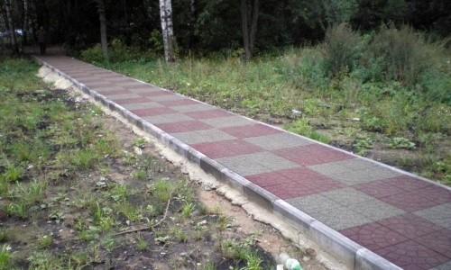 Бетонированная дорожка на даче